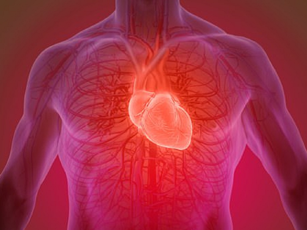 Exercising for 15 minutes a day is enough to strengthen your heart
